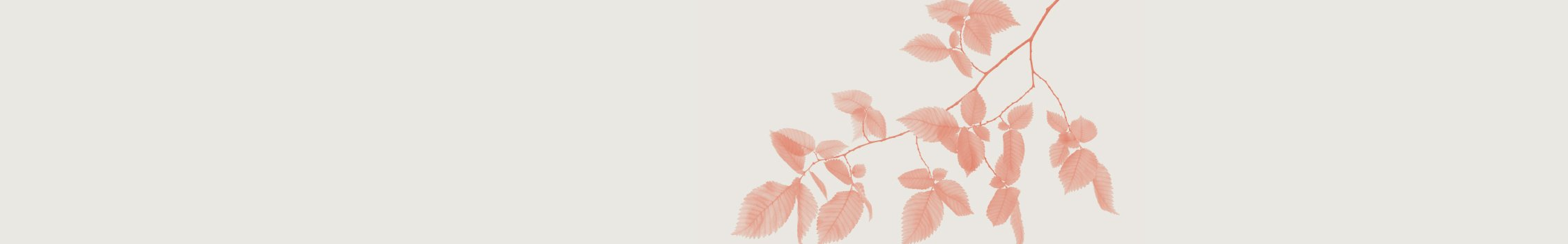 Header_Branch_Red