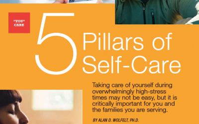 The Director: 5 Pillars of Self-Care