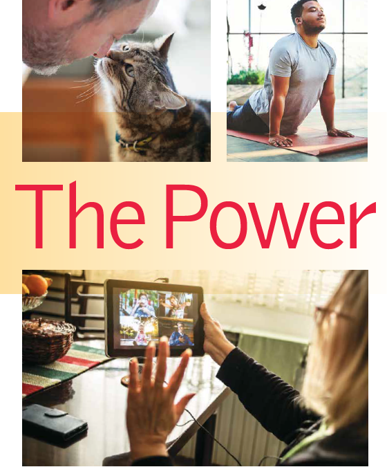 The Director: The Power of Touch